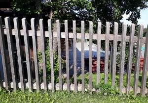 Staketten-Zaun natürlich vergraut