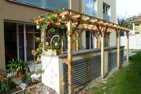 Pergola aus Holz - Dekoration und Sichtschutz für Garten und Terrasse
